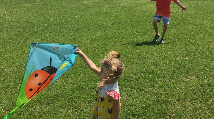 The Art of Flying Kites