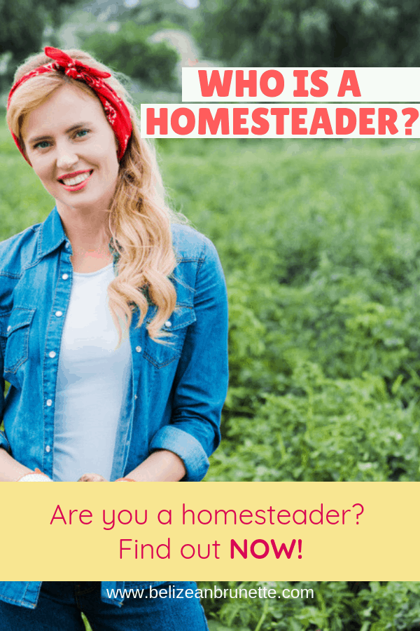 homesteader definition